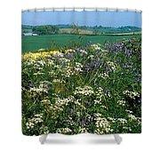 Wildflowers, Near Seaforde, Co Down Shower Curtain
