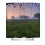Wildflowers On A Foggy Pasture Shower Curtain