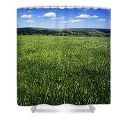 Wildflowers On A Landscape, Connemara Shower Curtain