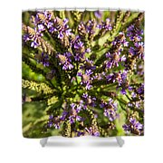 Wildflowers Top Down Shower Curtain