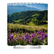 Wildflowers Umbria Shower Curtain