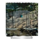 Williams Pool Shower Curtain