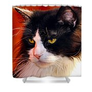 Willow Deep Thought Shower Curtain