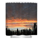 Willow Sunrise Shower Curtain