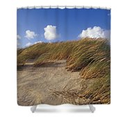 Wind Blown Grass Tussocks Precariously Shower Curtain