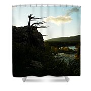 Wind Blown Tree At Many Glacier Shower Curtain