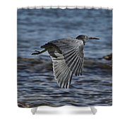 Wind Drifter V2 Shower Curtain