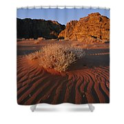 Wind Makes Waves In The Sand Shower Curtain