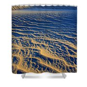 Wind Song Shower Curtain