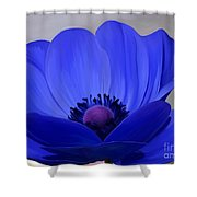 Windflower Shower Curtain