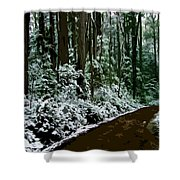 Winding Forest Trail In Winter Snow Shower Curtain