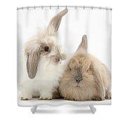 Windmill-eared Rabbits Shower Curtain