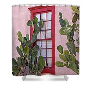 Window 2 Shower Curtain