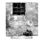 Window And Sidewalk Bw Shower Curtain