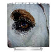 Window To A Soul Shower Curtain