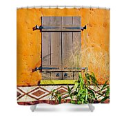 Window To Africa Shower Curtain