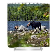 Window To The Moose Shower Curtain