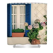 Window With Flowers Shower Curtain