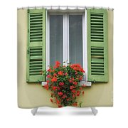 Window With Shutter Flowers Shower Curtain