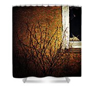 Windows Wink  Shower Curtain