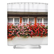 Windows With Red Flowers Shower Curtain