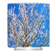 Winds Upon The Branchs II Shower Curtain
