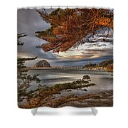 Windy Cove Shower Curtain