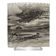 Windy Cove Bw Shower Curtain