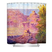 Windy Day In The Canyon Shower Curtain