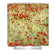 Windy Poppies Shower Curtain