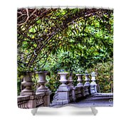 Wine And Vine Shower Curtain