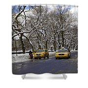 Winter - 2011 Shower Curtain