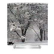 Winter 0002 Shower Curtain