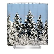Winter 0005 Shower Curtain