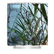 Winter And Fall Fight Shower Curtain