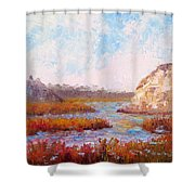 Winter At The Back Bay Shower Curtain