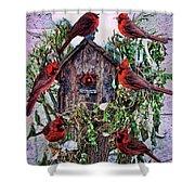 Winter Birdhouse Shower Curtain