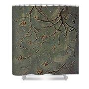 Winter Branch Shower Curtain