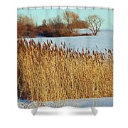 Winter Breeze Shower Curtain by Aimee L Maher Photography and Art Visit ALMGallerydotcom