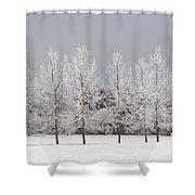 Winter, Calgary, Alberta, Canada Shower Curtain