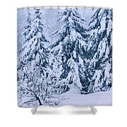 Winter Coat Shower Curtain