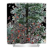Winter Color Shower Curtain