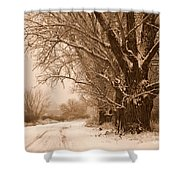 Winter Country Road Shower Curtain