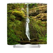 Winter Falls Shower Curtain
