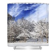 Winter Forest Covered With Snow Shower Curtain