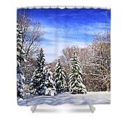 Winter Forest With Snow Shower Curtain