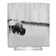 Winter Graze Shower Curtain