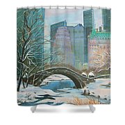 Winter In New York Shower Curtain
