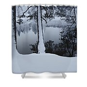 Winter In The Countryside  Bold Tree Shower Curtain