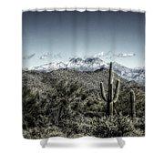 Winter In The Desert Shower Curtain